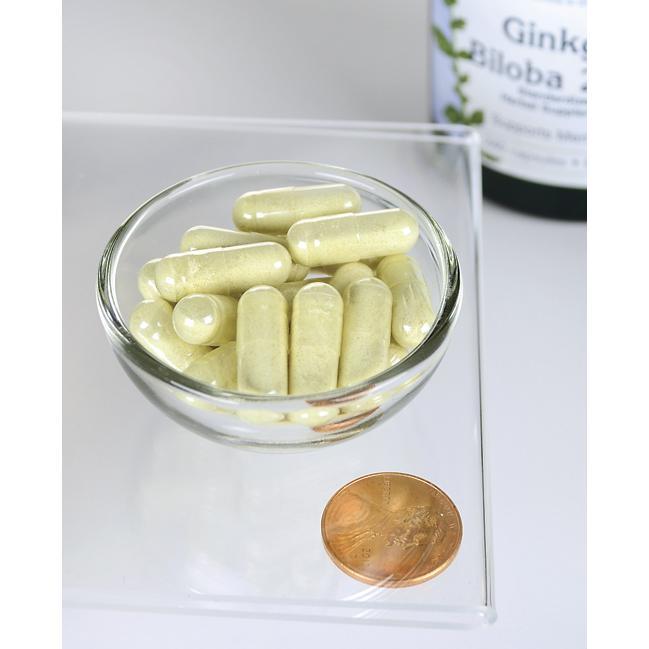 Swanson Ginkgo Biloba 60 mg 240 capsules