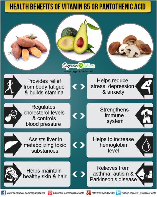 Pantothenic Acid benefits