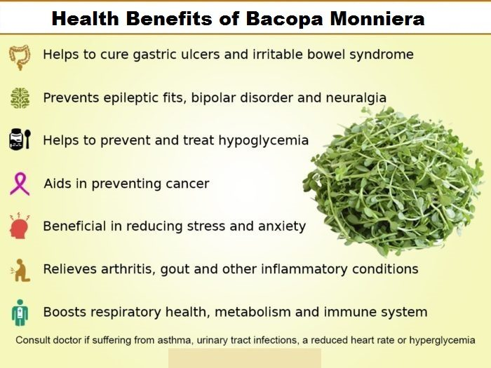 Benefits of Bacopa Monniera Extract or Brahmi
