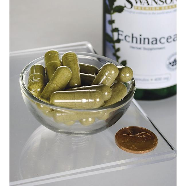 Swanson Echinacea Herbal Supplement 400 mg 100 caps