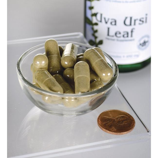 Uva Ursi Leaf 450 mg 100 capsules
